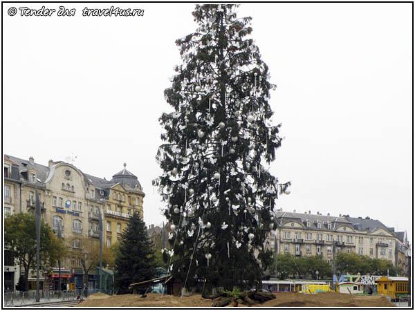Рождественская елка в Меце