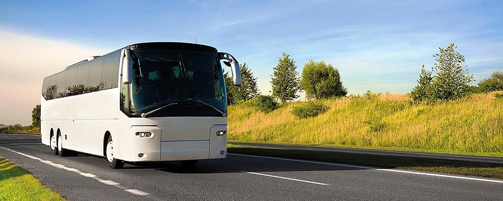 Трансфер на автобусе