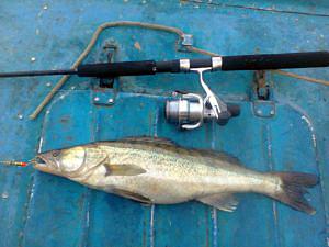 Рыбалка на Березовых островах