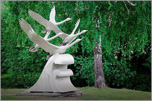Пополнение в семействе омских лебедей