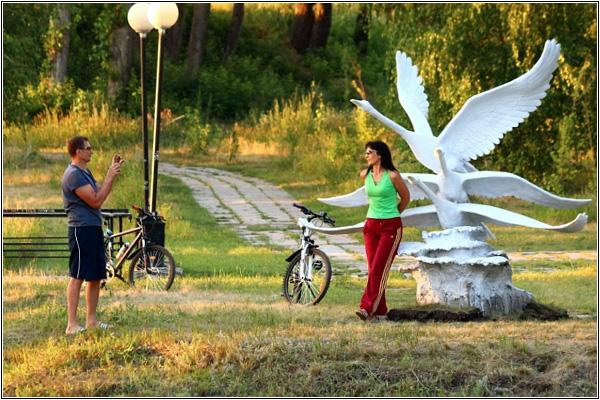 Фотосессия с лебедями в Омске
