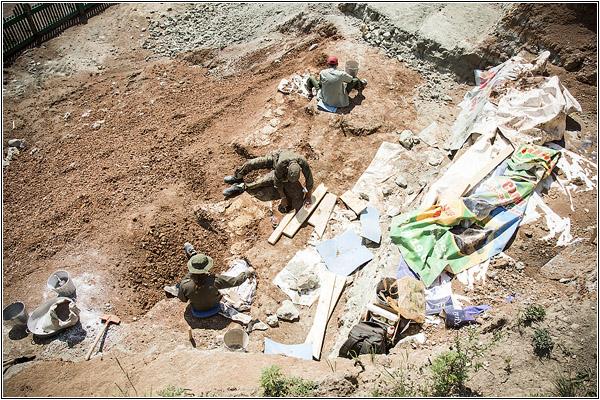 На Кузбассе нашли динозавров