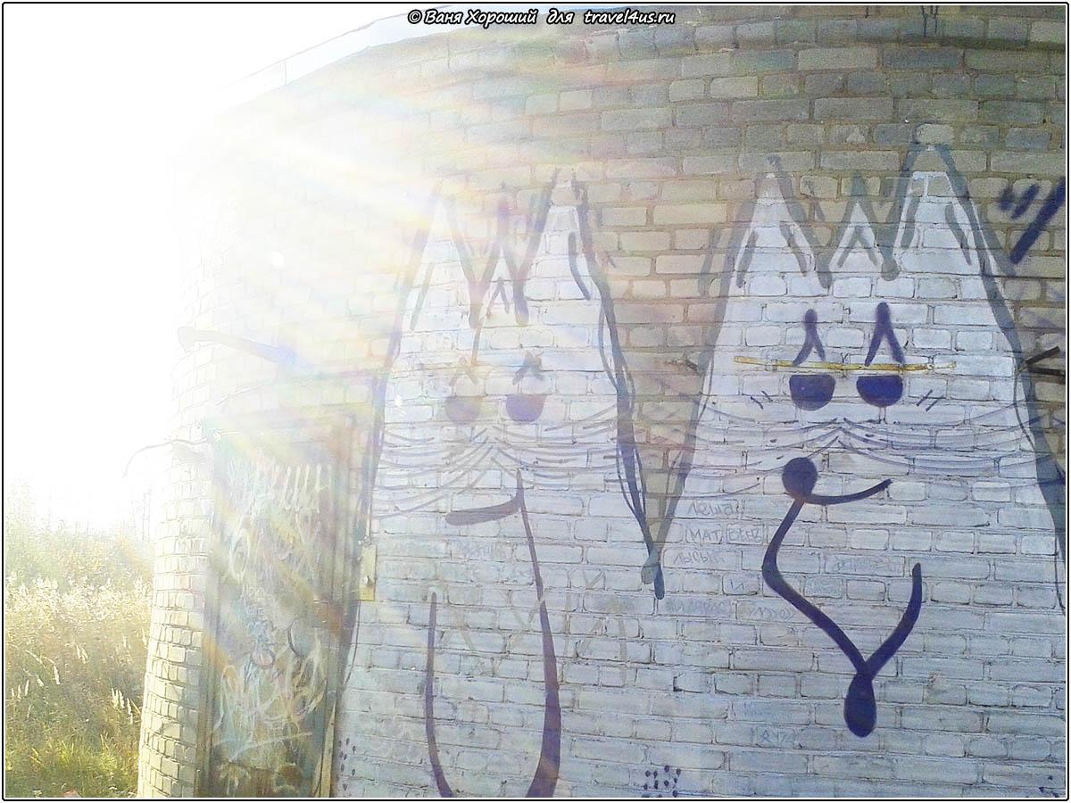 Граффити в городе Кириши